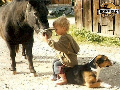 boy with pony and dog