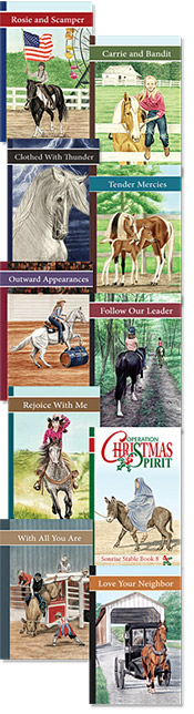 sonrise stable christian horse book series