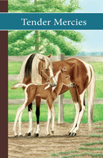 sonrise stable book 4